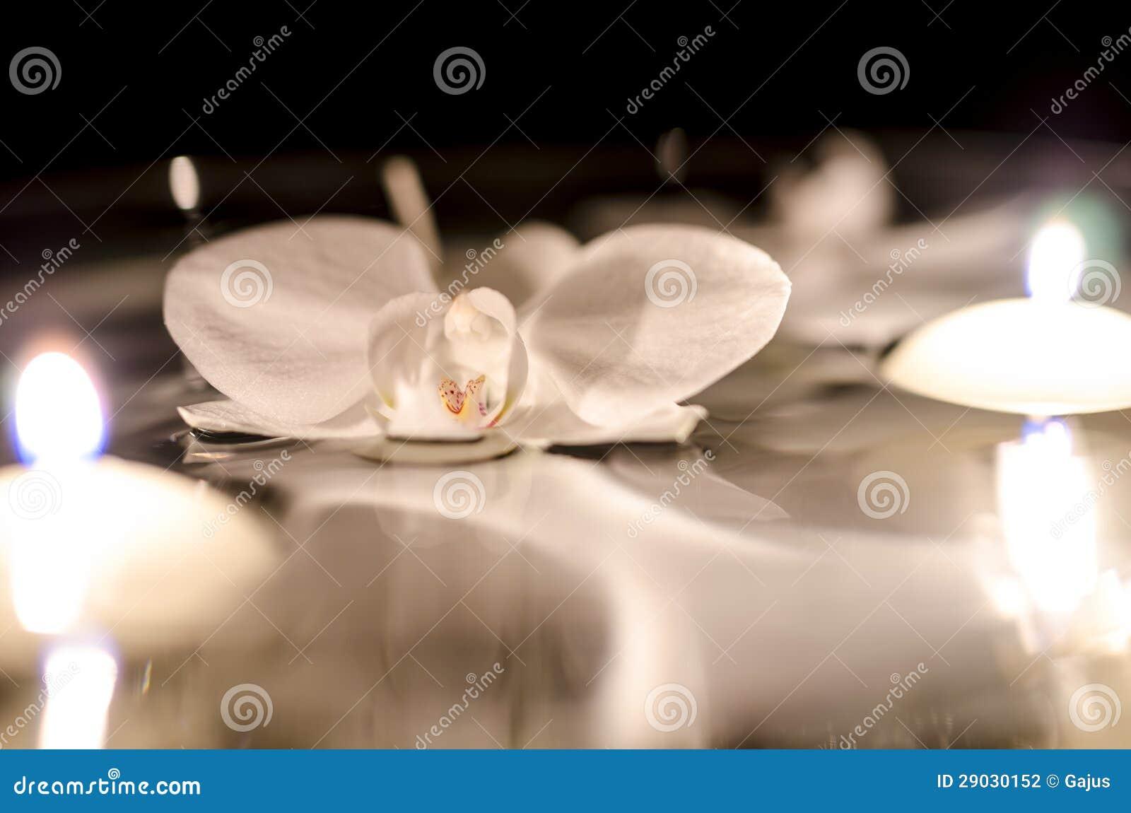 Orchidea e candele che galleggiano sull 39 acqua fotografia for Orchidea acqua