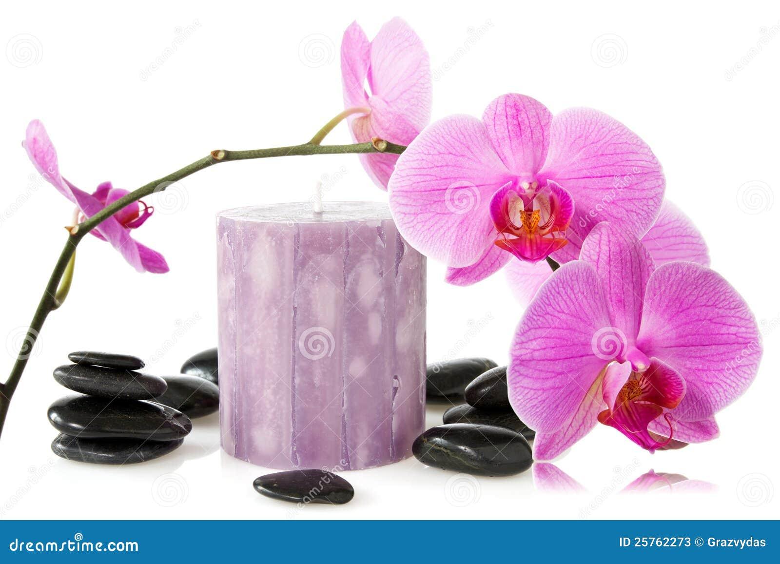 orchidee aromatische kerze und schwarze steine stockfotos bild 25762273. Black Bedroom Furniture Sets. Home Design Ideas