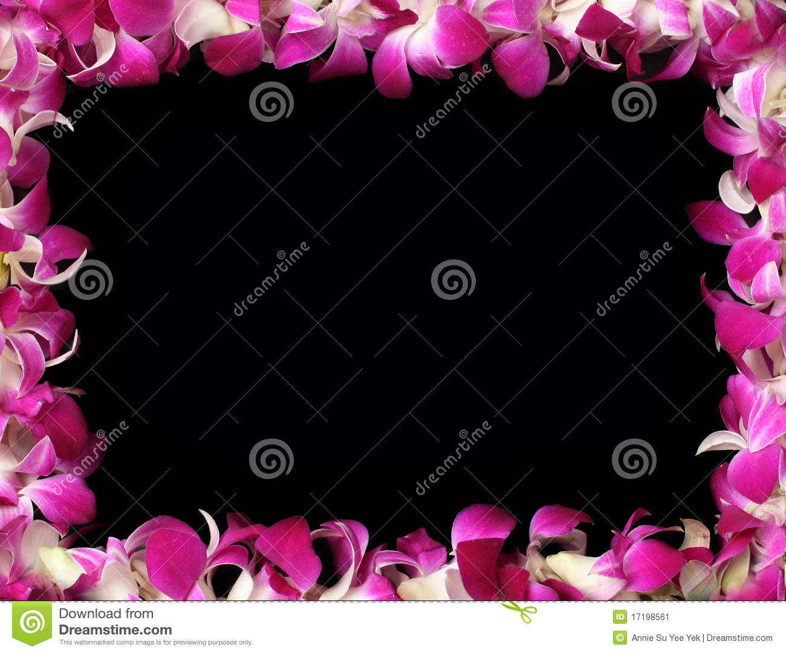 Orchideefeld