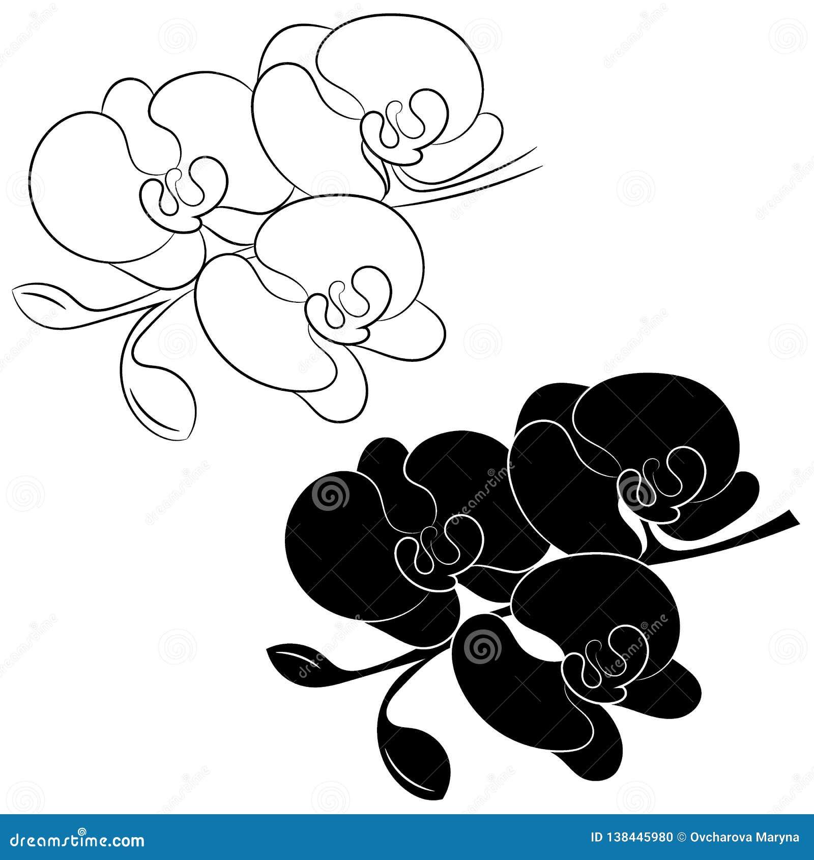 Orchideenblumenschattenbild und -entwurf