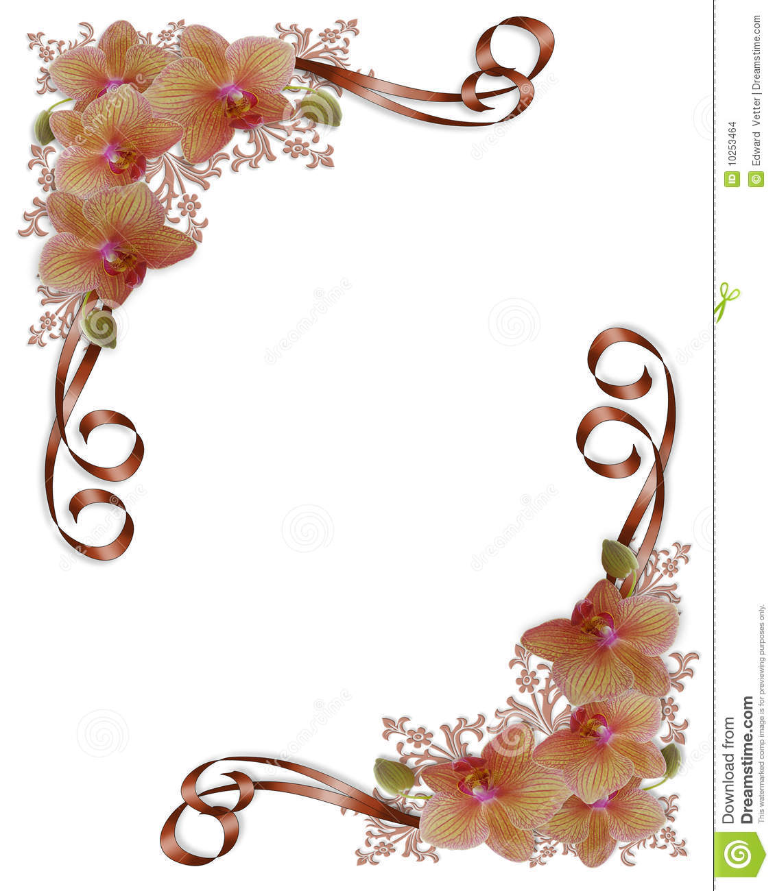 Orchids Floral Wedding Border Stock Images - Image: 10253464