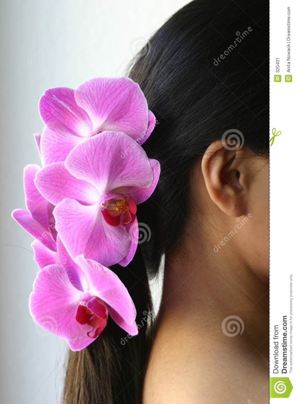 Orchids and ponytail