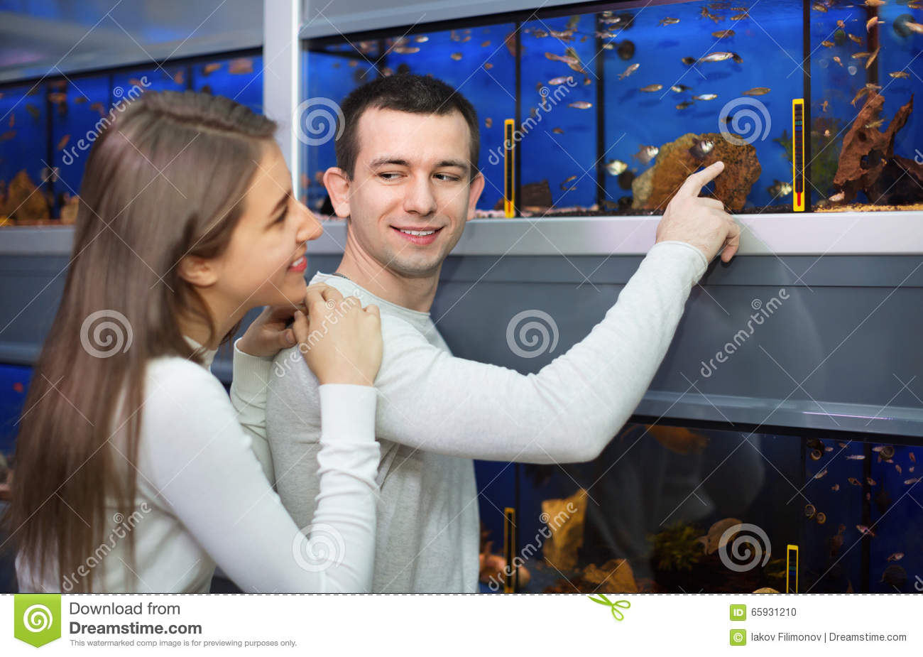 Ordinary cheerful positive customers selecting tropical fish