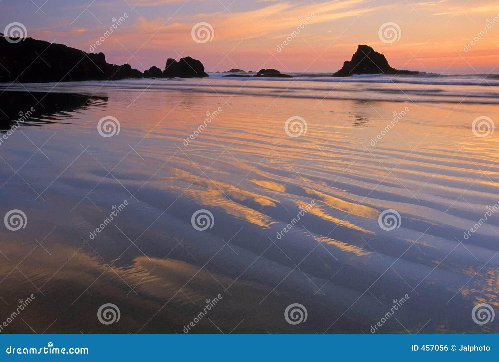 Oregon Coast 10