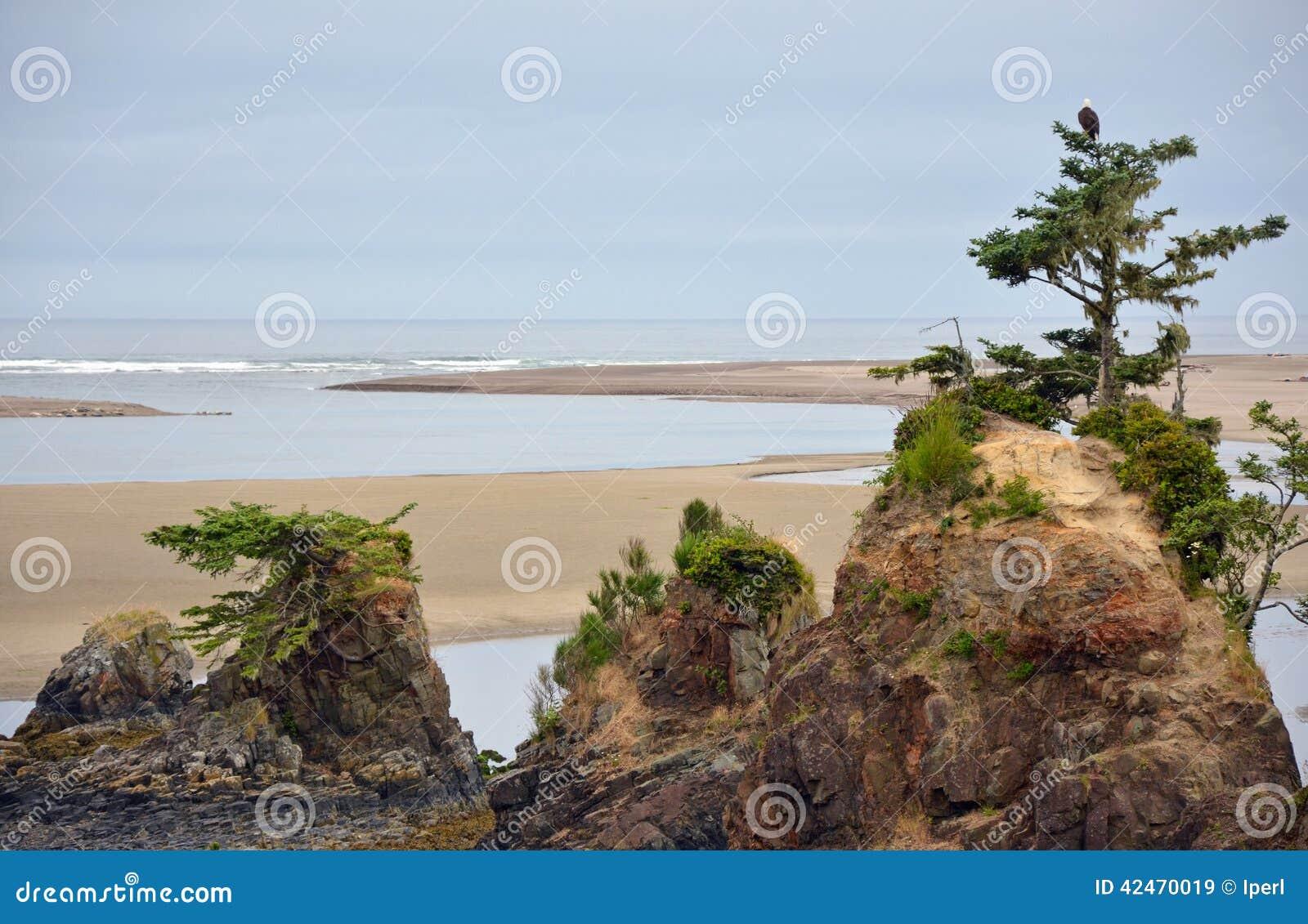 Oregon-Strand mit Felsen und Bäumen