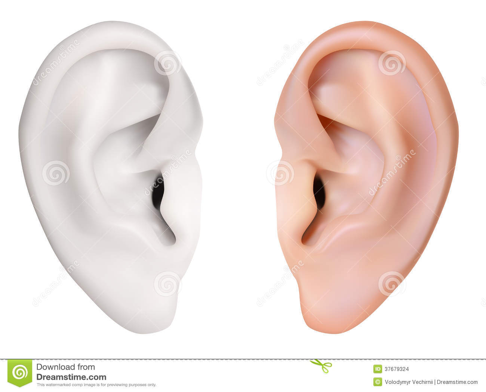 Oreille humaine illustration de vecteur image du closeup - Clipart oreille ...