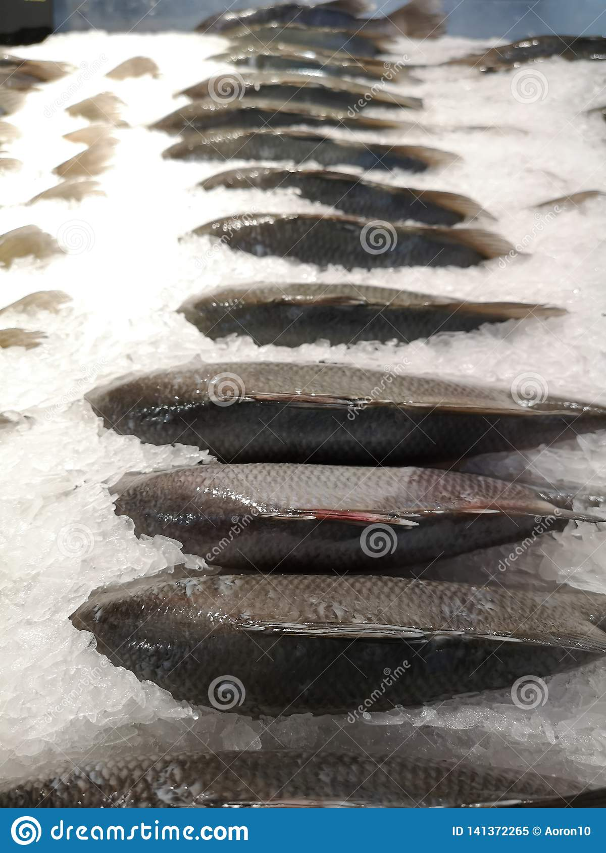 Oreochromis niloticus fishs, fresh for cooking Place on ice piles in the freezer In the supermarket
