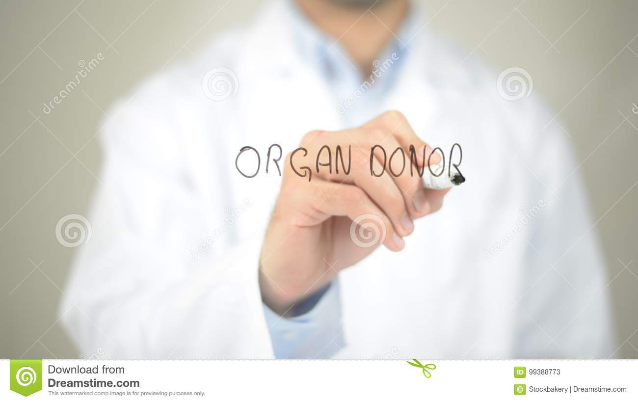 Organ Donor , Doctor writing on transparent screen