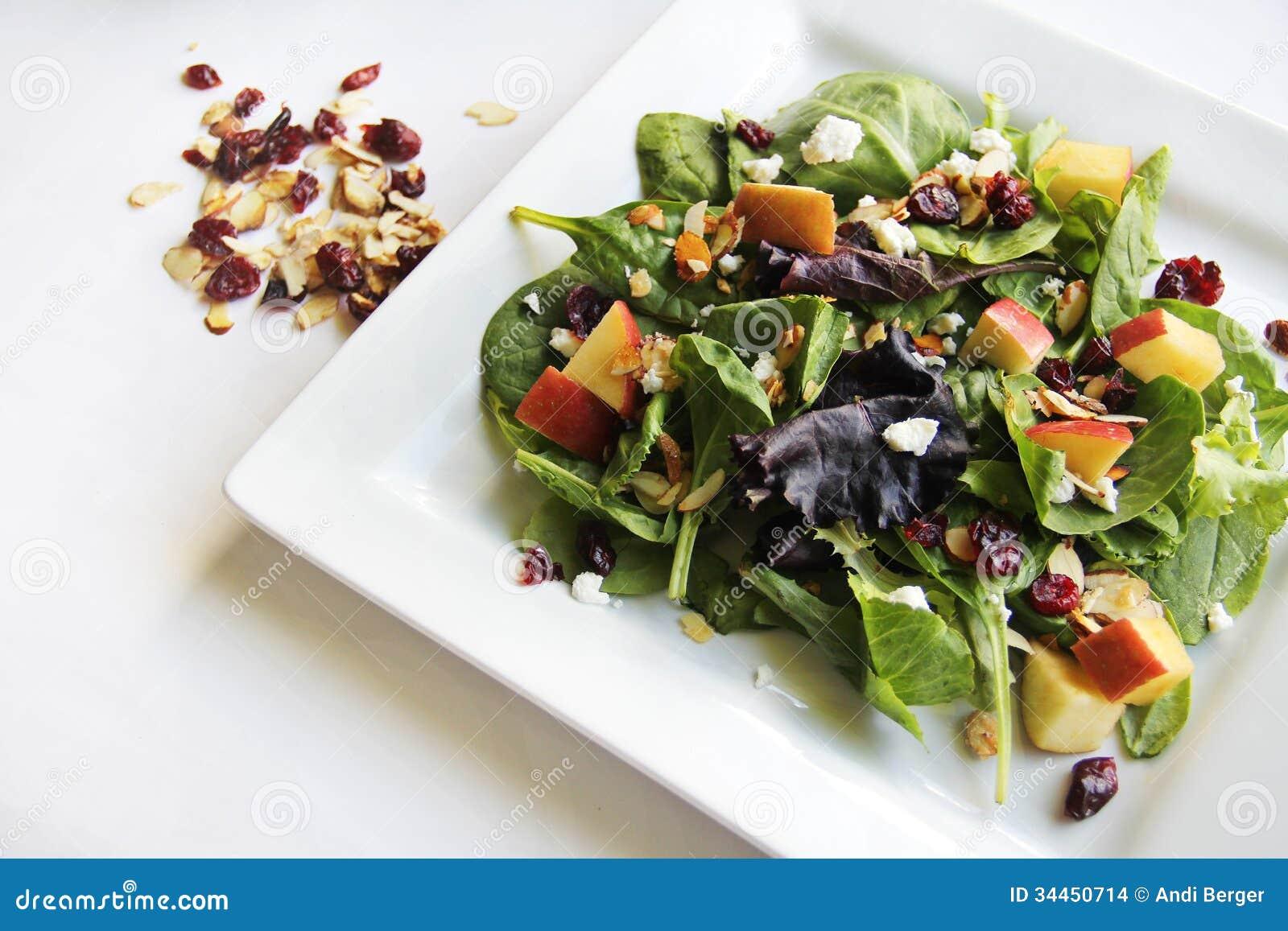 Organic baby spring mix salad