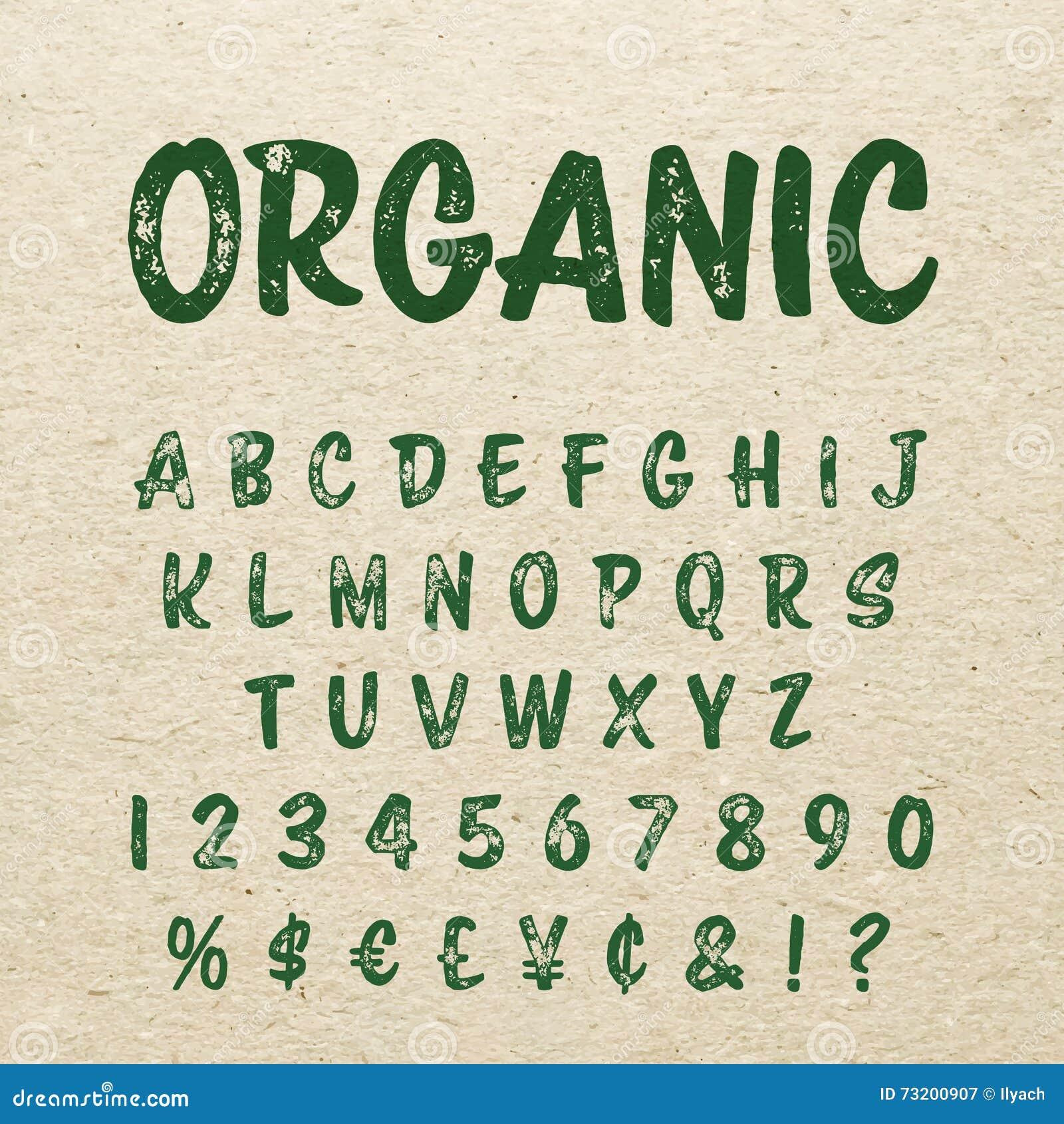 Organic Brush Script Lettering Font Handwritten Calligraphic