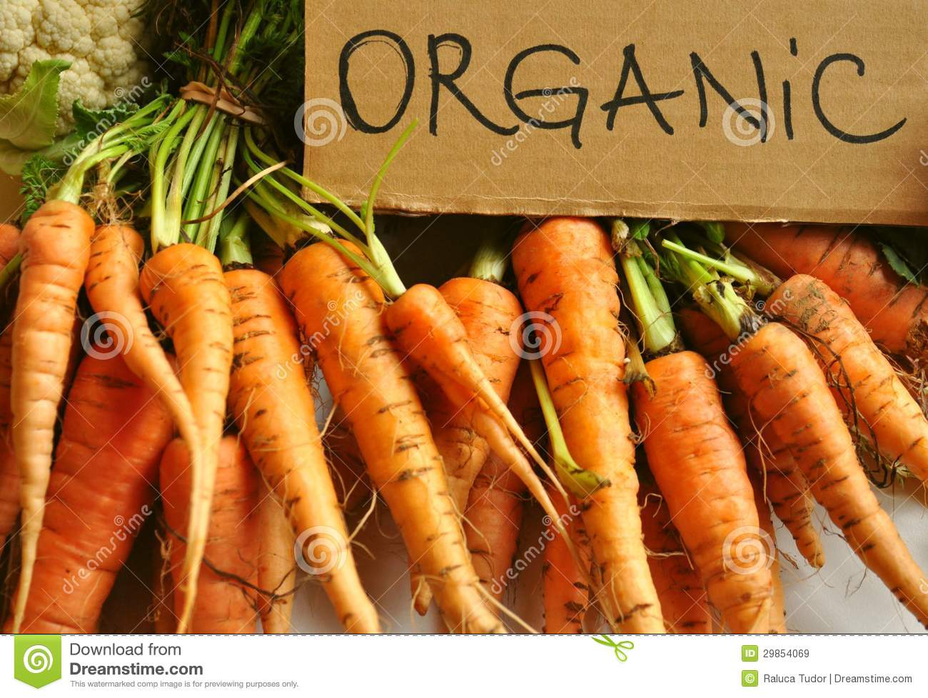Organic , real vegetables : carrots