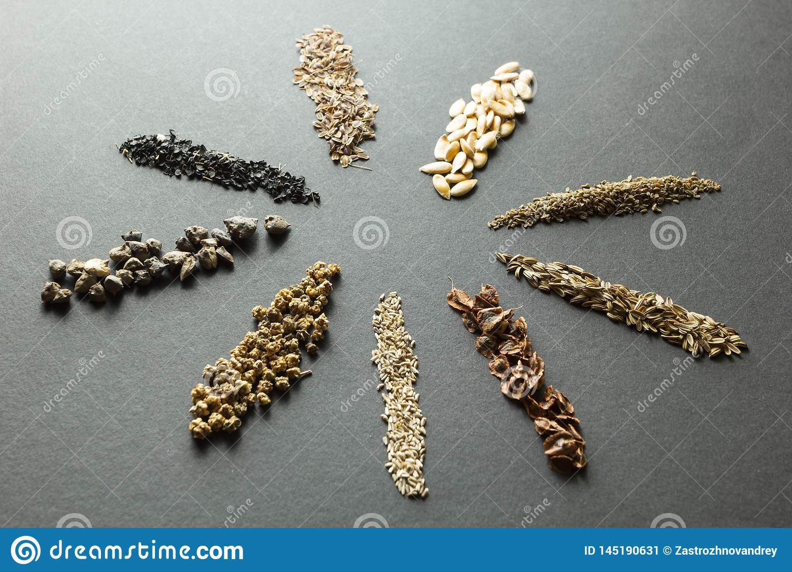 Organic cereals and seeds: dill and melon and carrots and fennel with rhubarb, lettuce and beets, spinach, onions on a black backg