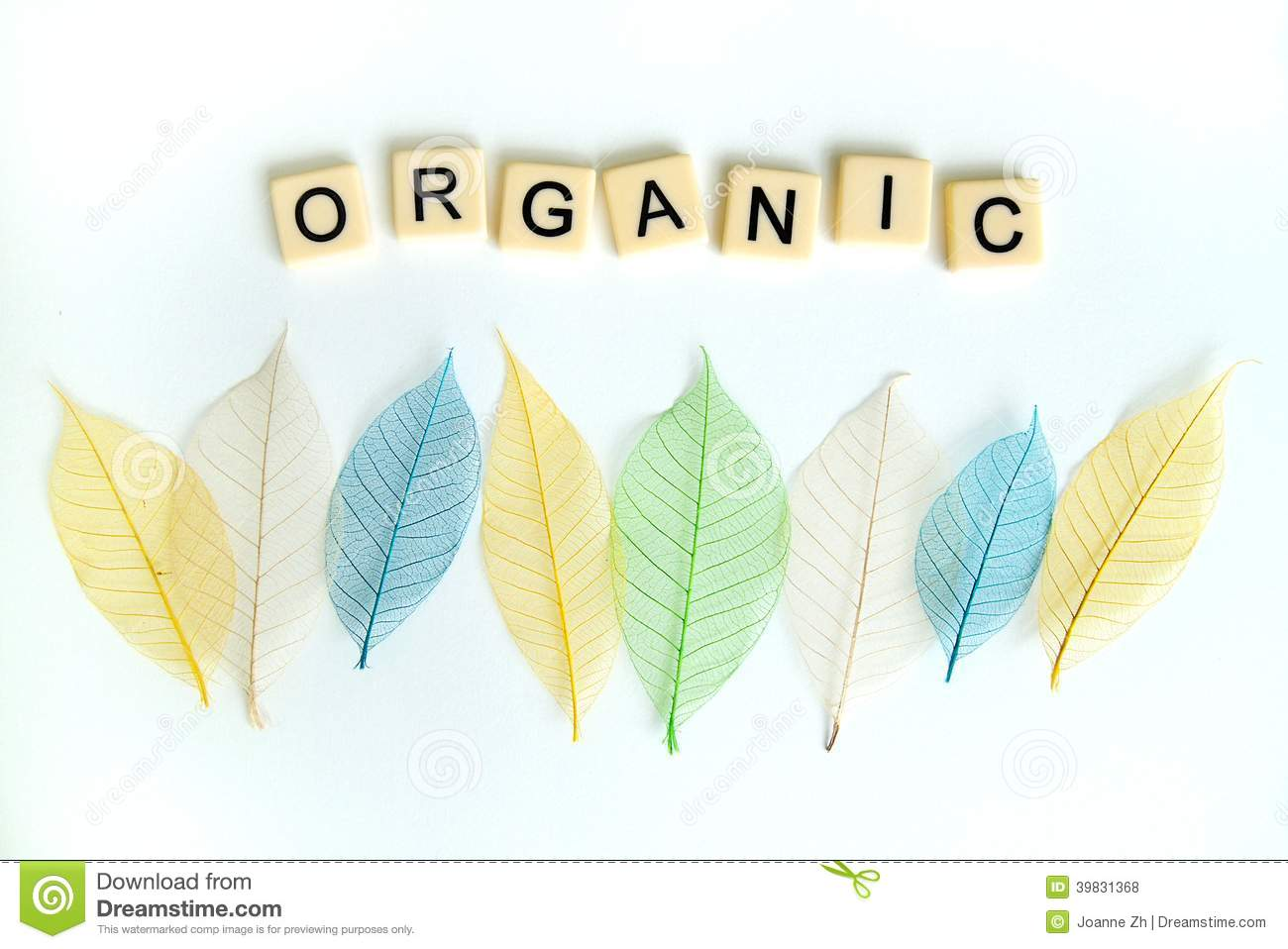 Organic concept with dried leaves