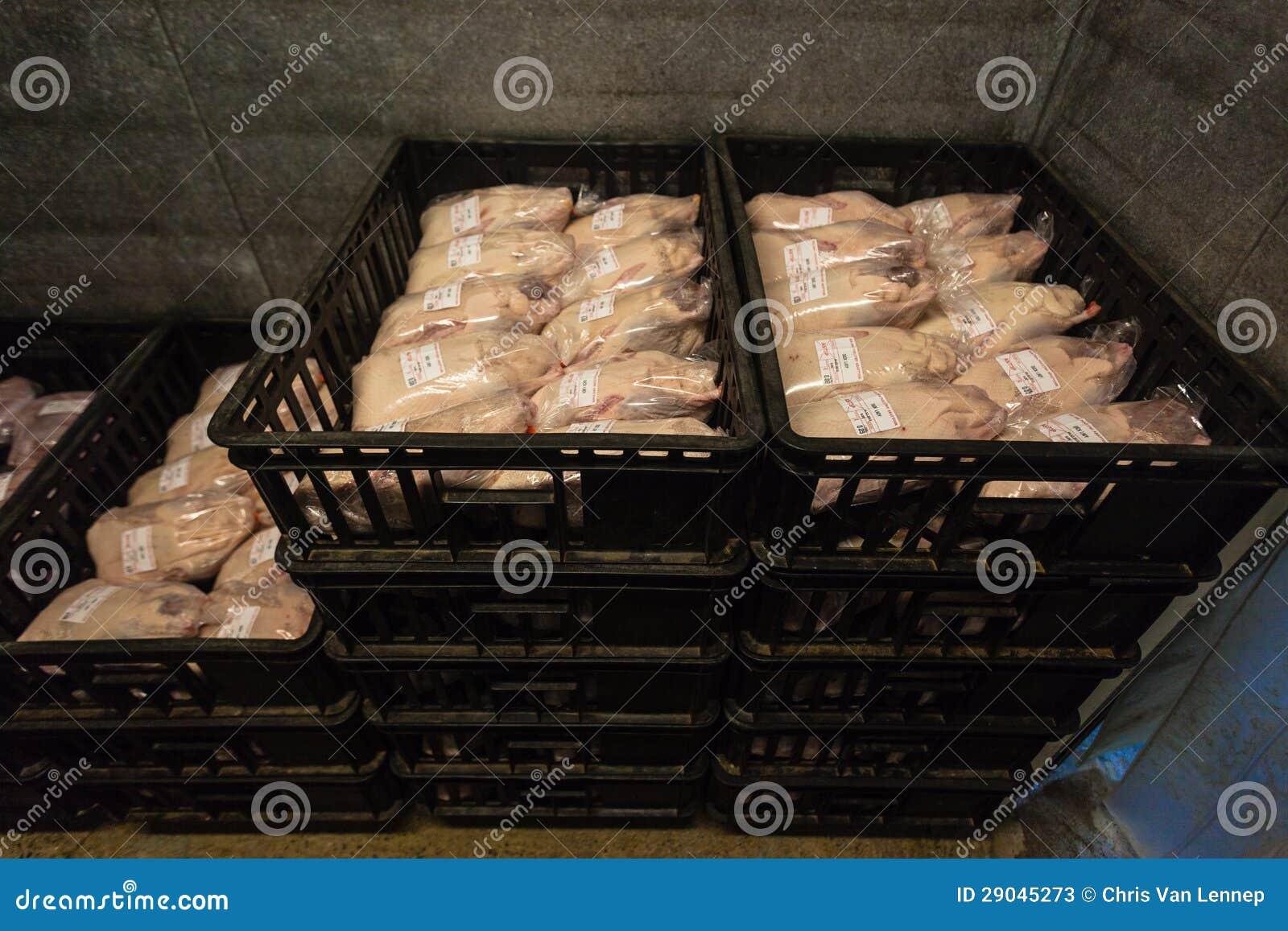 Poultry abattoir business plan