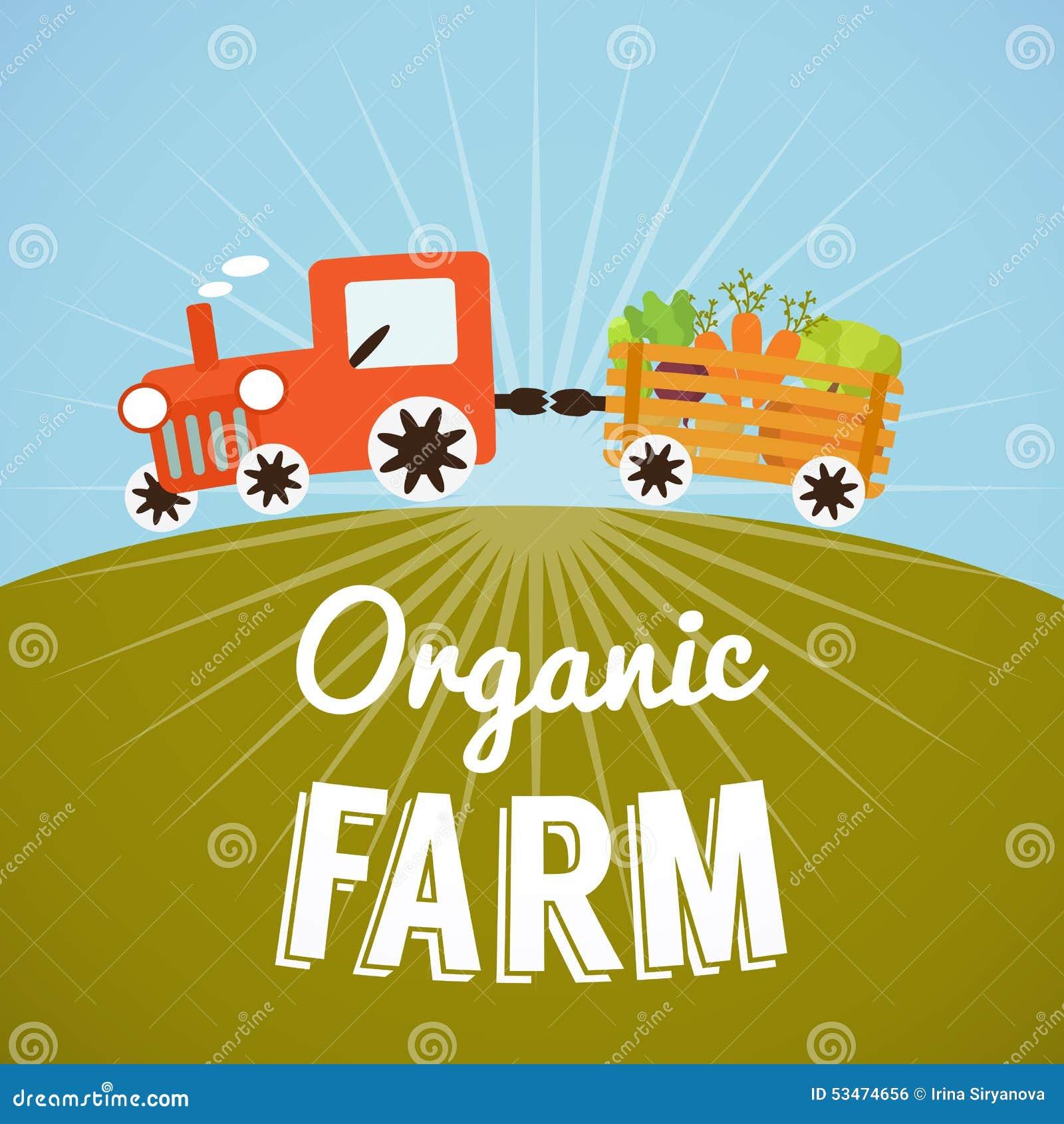 Organic Farm Poster Stock Vector - Image: 53474656