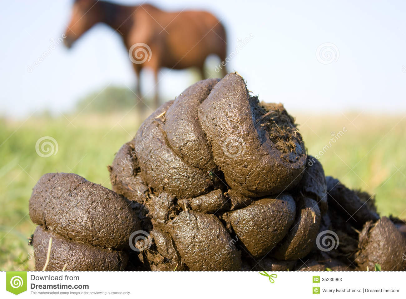Organic Fertilizer Stock Photos - Image: 35230963