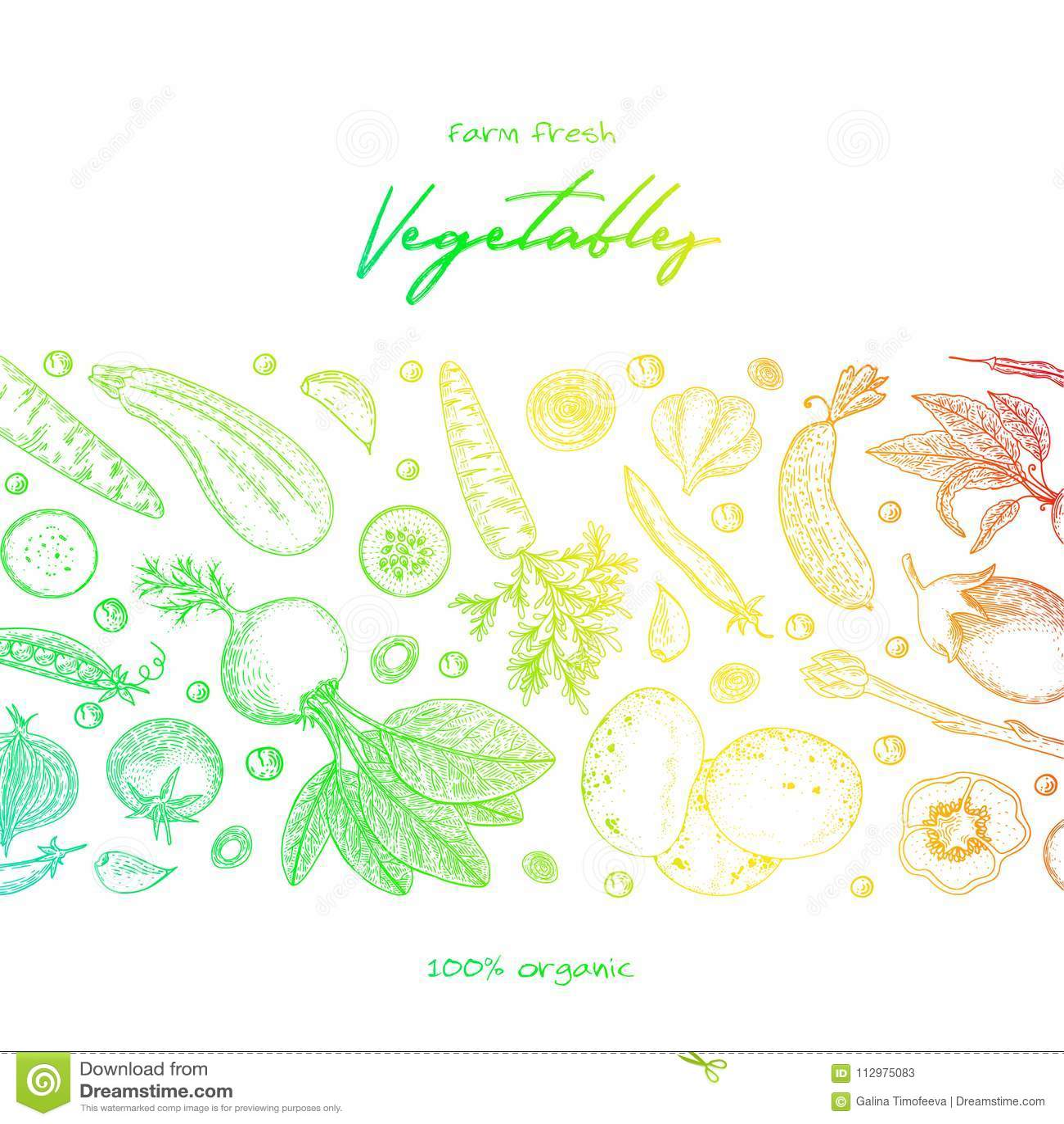 Organic food design template. Fresh vegetables. Hand drawn illustration frame with vegetables. Colorful template design