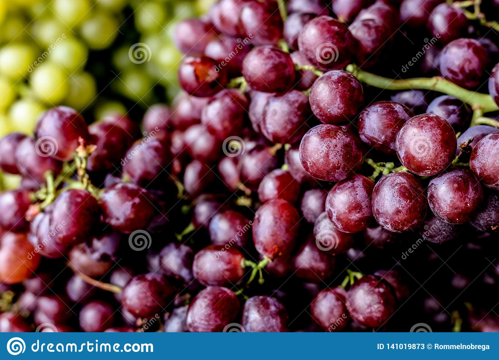 organic fresh purple grapes