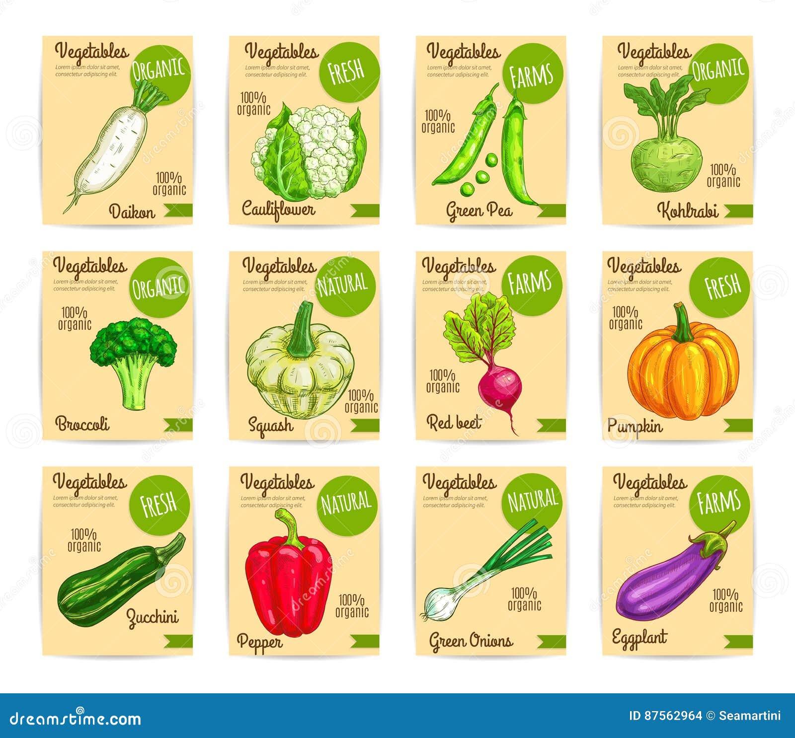 Videos By Tag: Vegetable