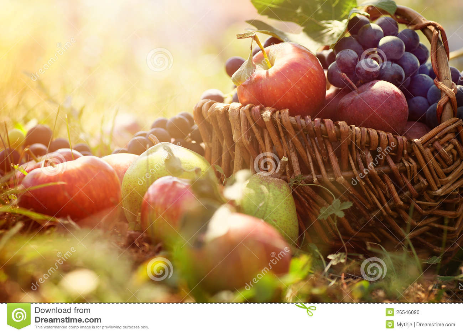 Organic fruit in summer grass