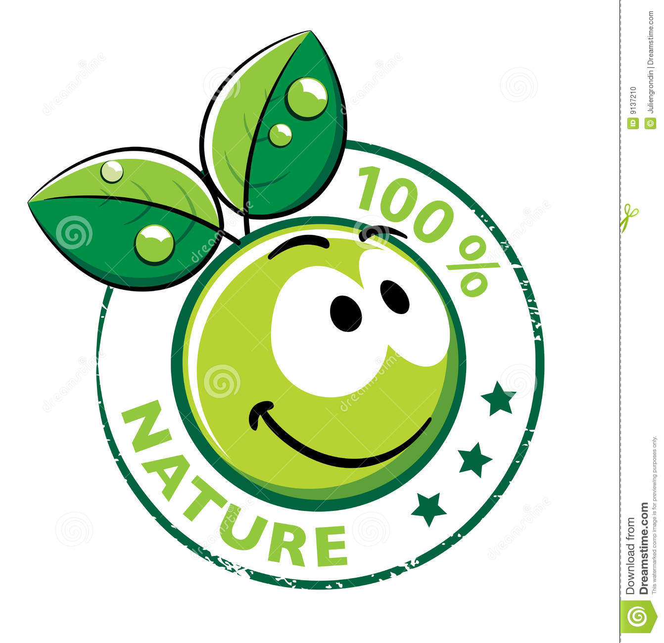 Organic Smiley With Green Leaves Stock Photo Image 9137210
