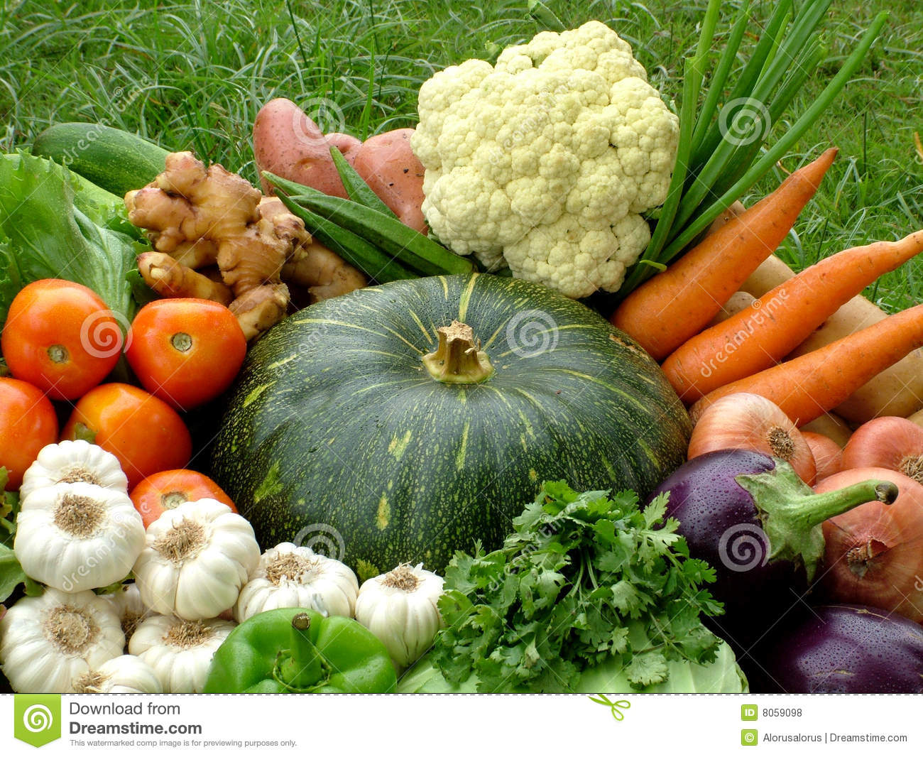 Royalty Free Stock Photo. Download Organic Vegetable Basket ...