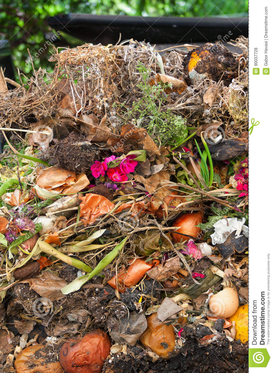 Organic waste stock photo. Image of decay, agriculture - 90037728