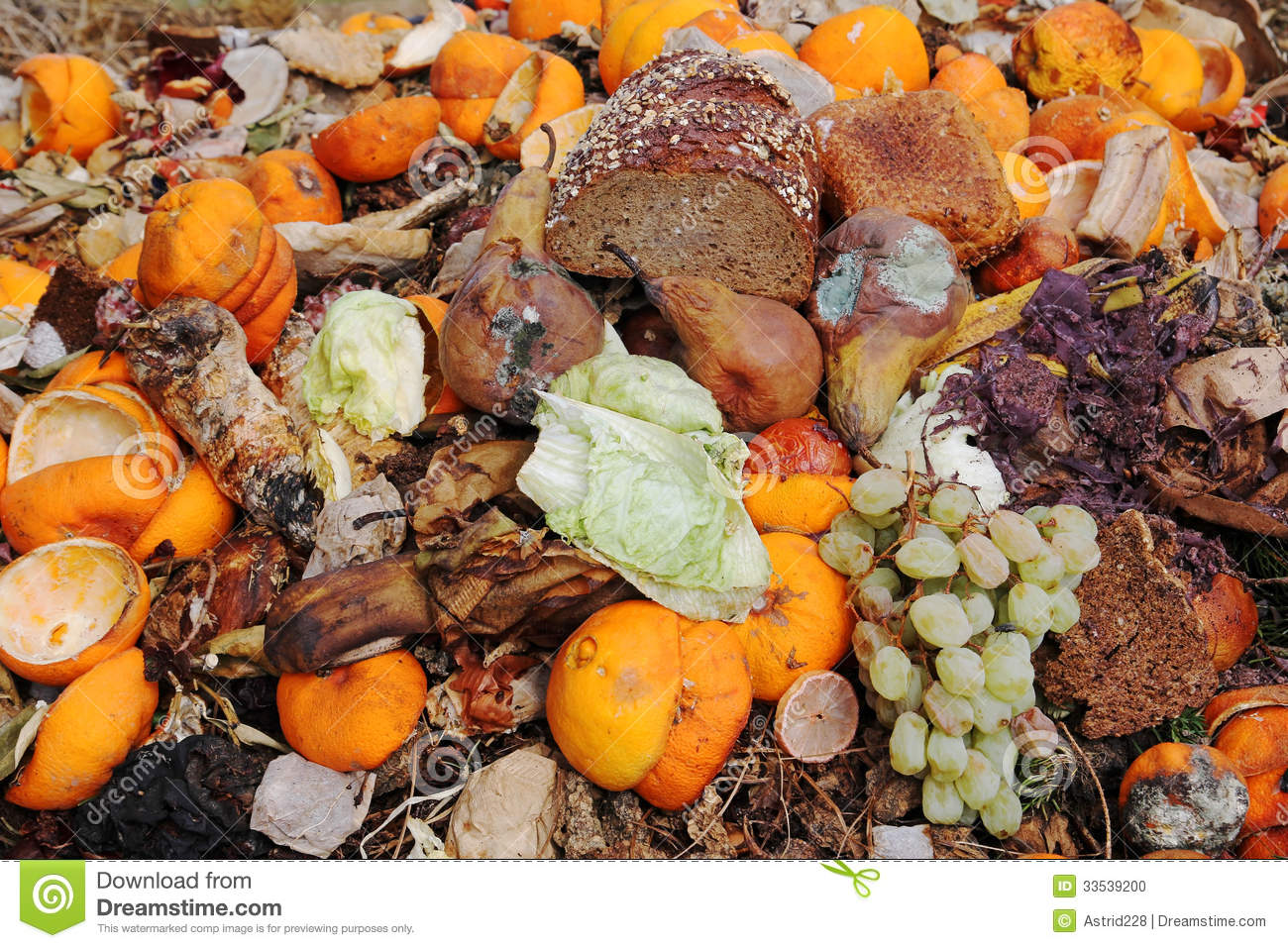 Organic Waste Stock Photo - Image: 33539200
