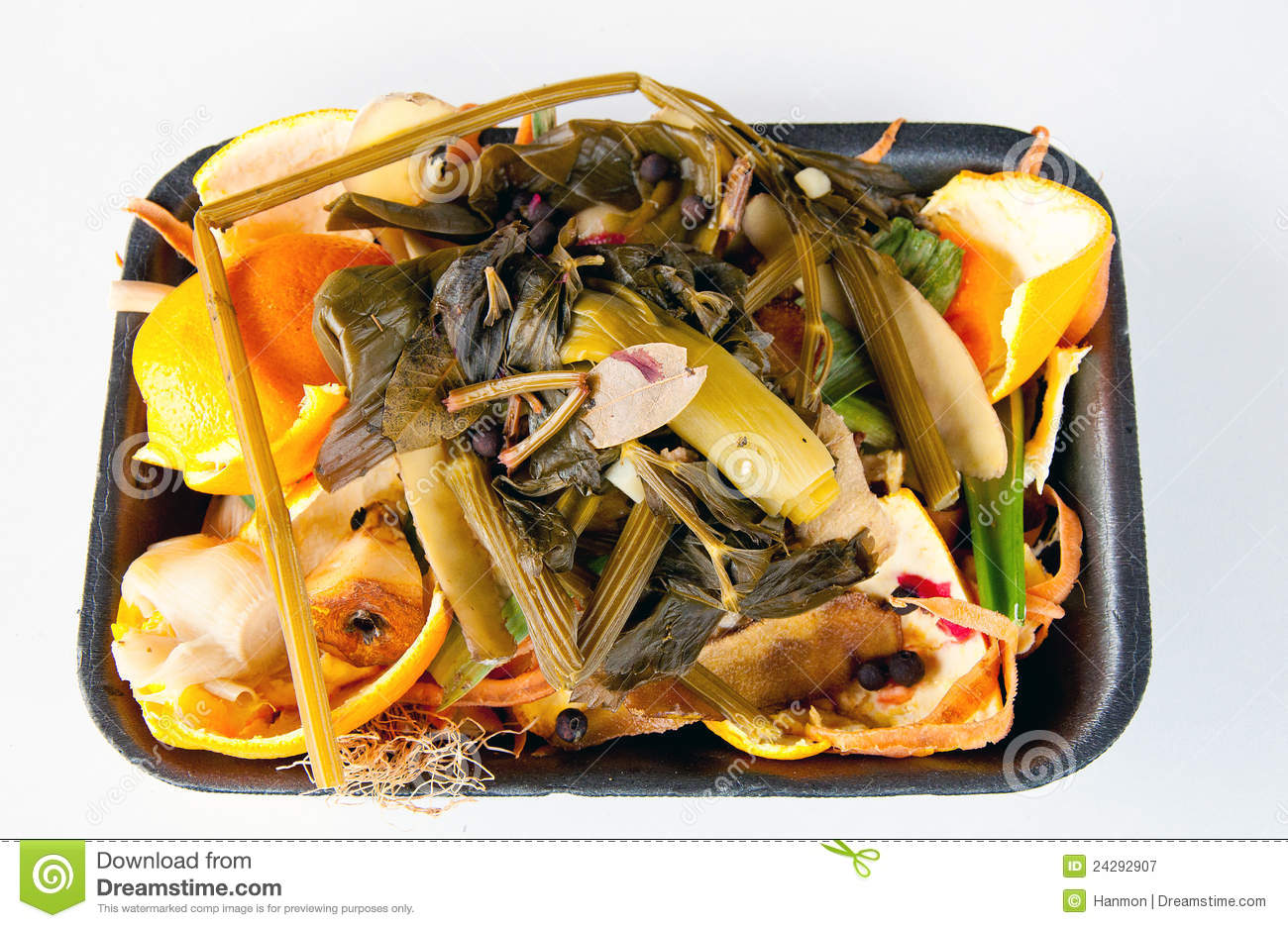 Organic Waste Ready To Compost Stock Image Image 24292907
