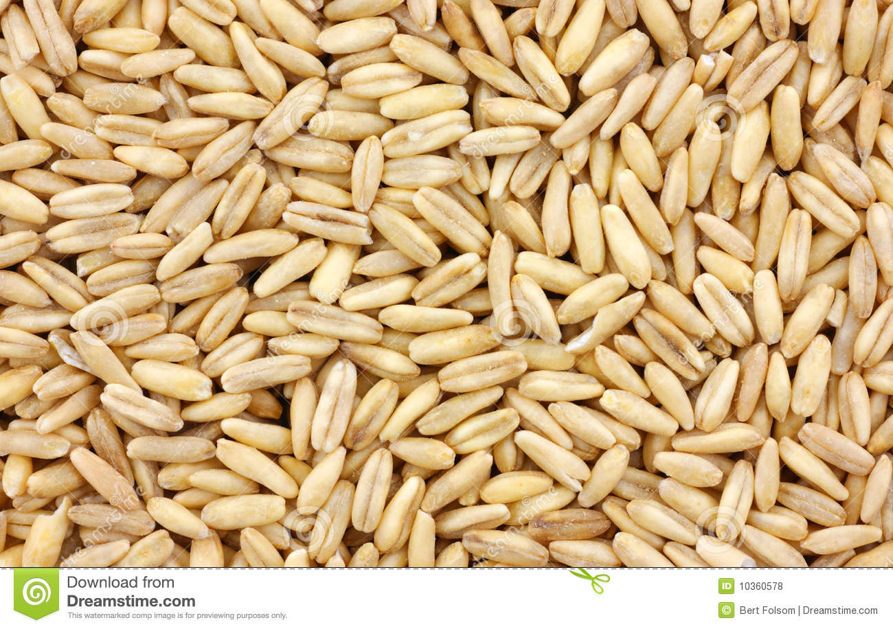 organic whole oat groats royalty free stock photos   image