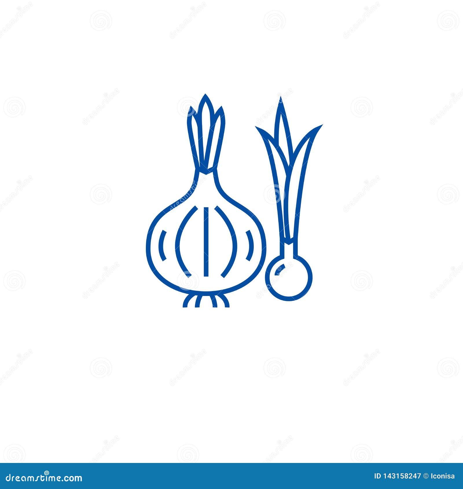 Organicznie cebuli linii ikony pojęcie Organicznie cebulkowy płaski wektorowy symbol, znak, kontur ilustracja