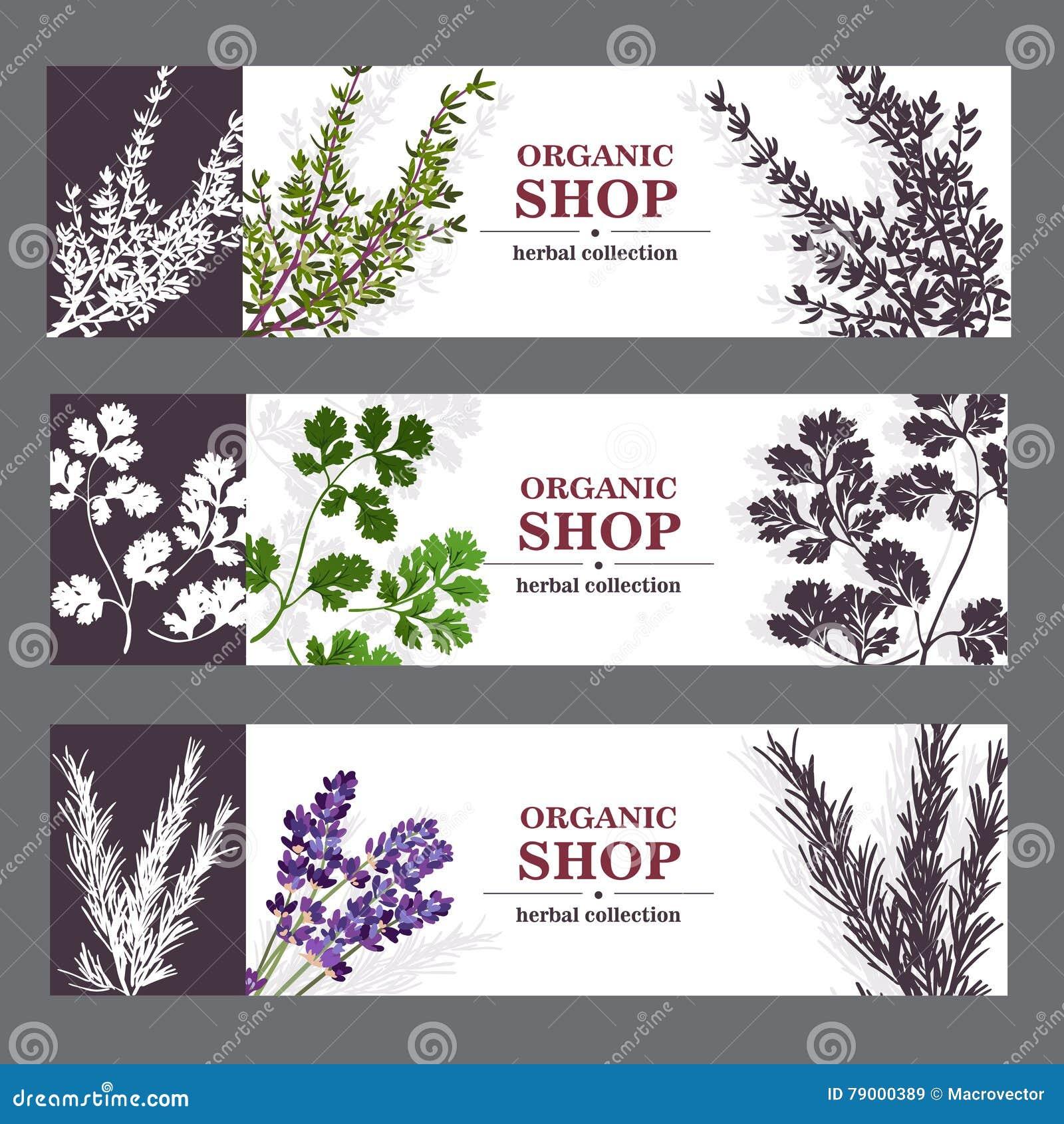 Organicznie Sklepowi sztandary Z ziele
