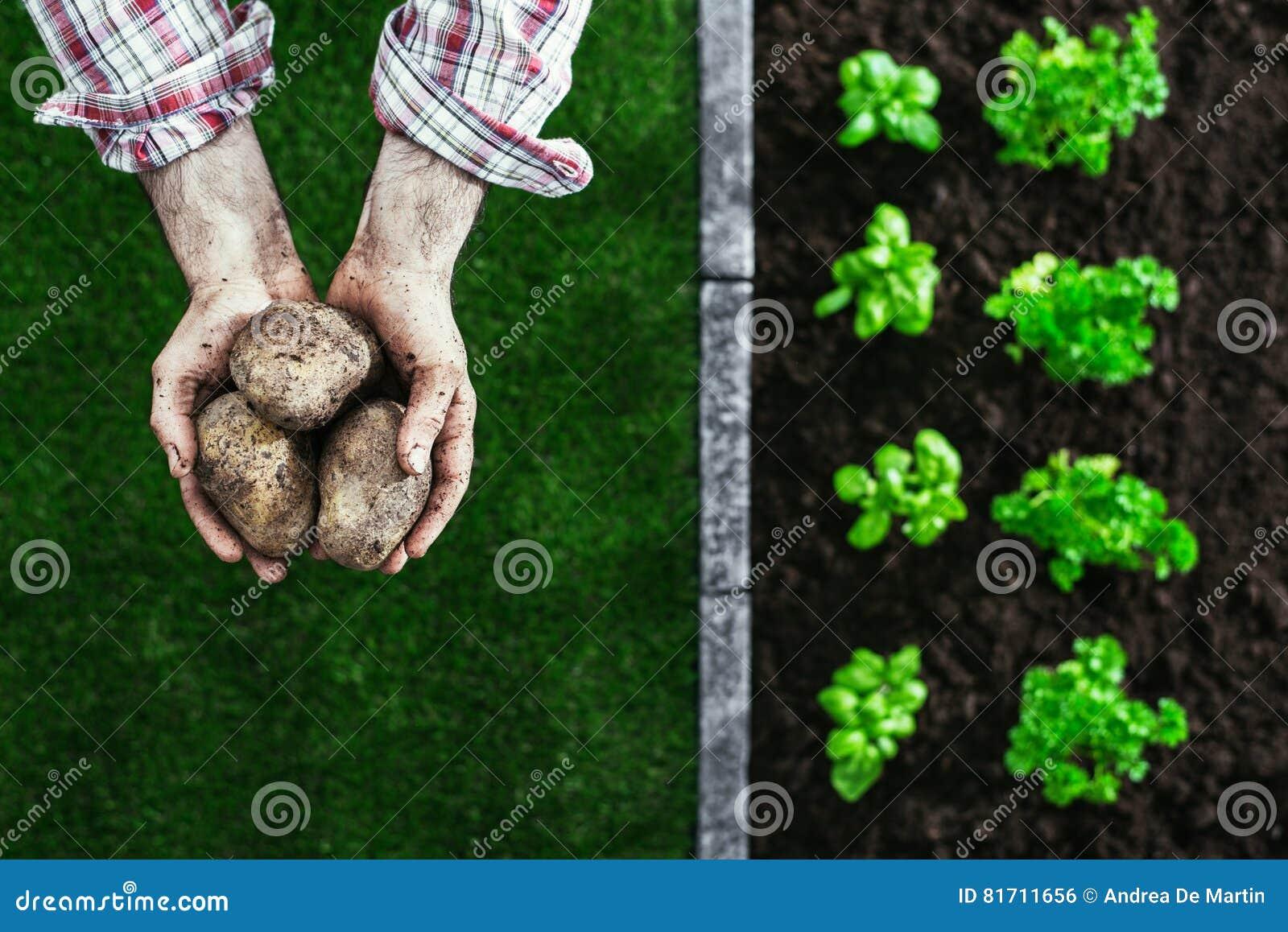 Organicznie uprawiać ogródek i uprawiać ziemię