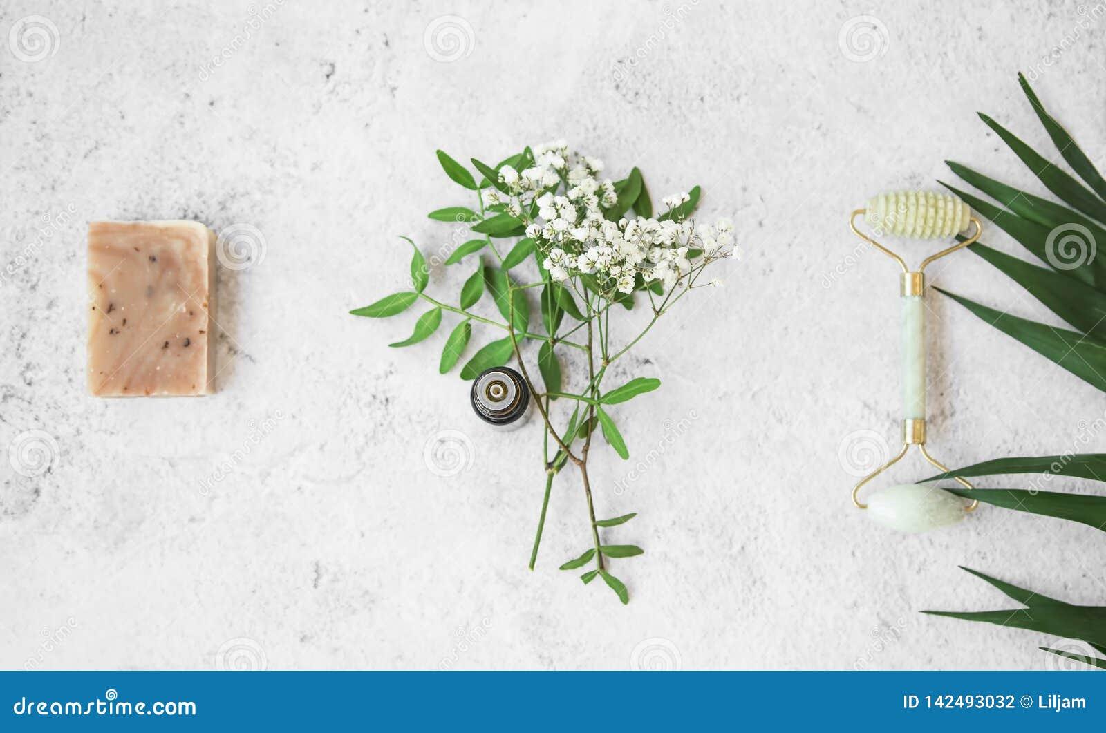 Organicznie zdrój naturalni ziołowi skincare składniki z ziele i roślinami, naturalny mydło, istotny olej, chabet twarzy rolownik