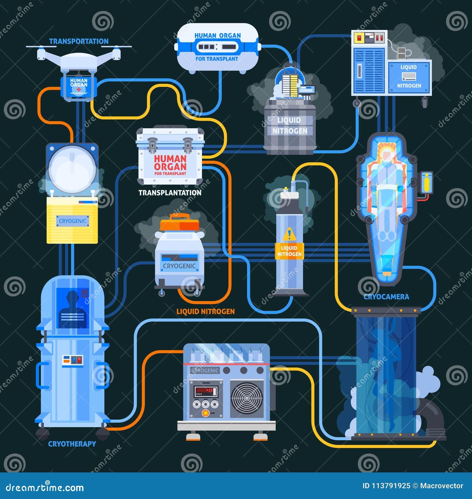 Organigrama plano del trasplante de Cryonics