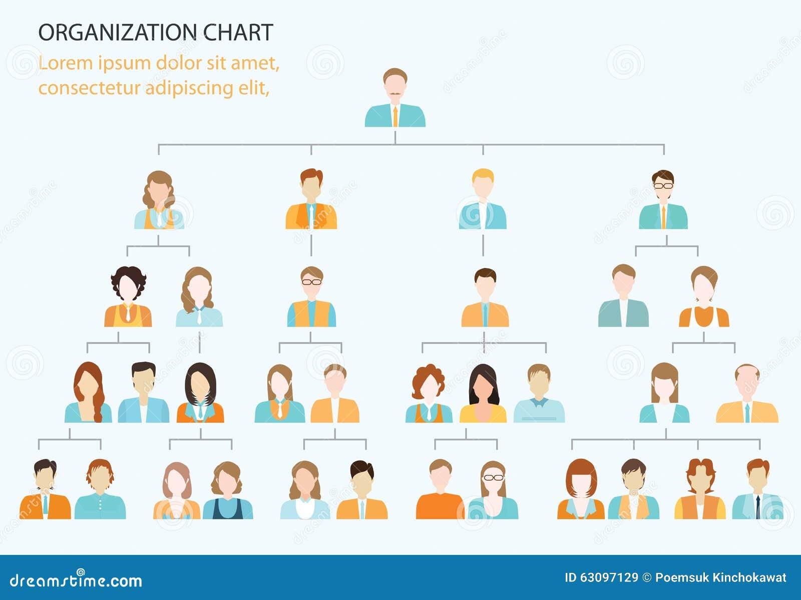 Organisatorische grafiek collectieve bedrijfshiërarchie