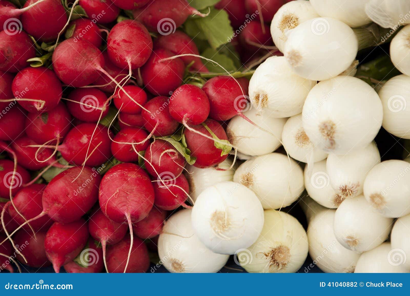 Organische Rettiche und Zwiebeln für Verkauf