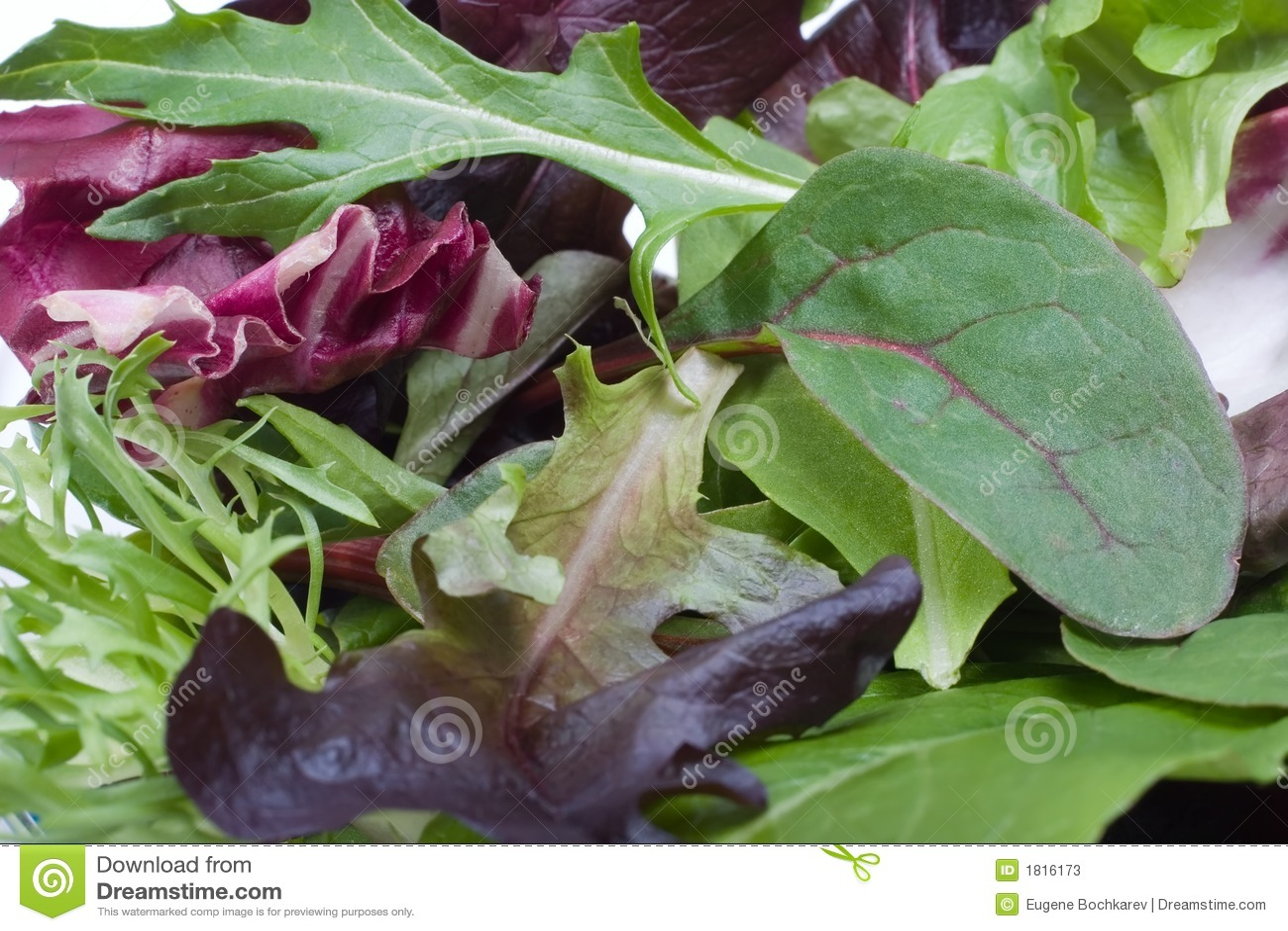 Organische salade
