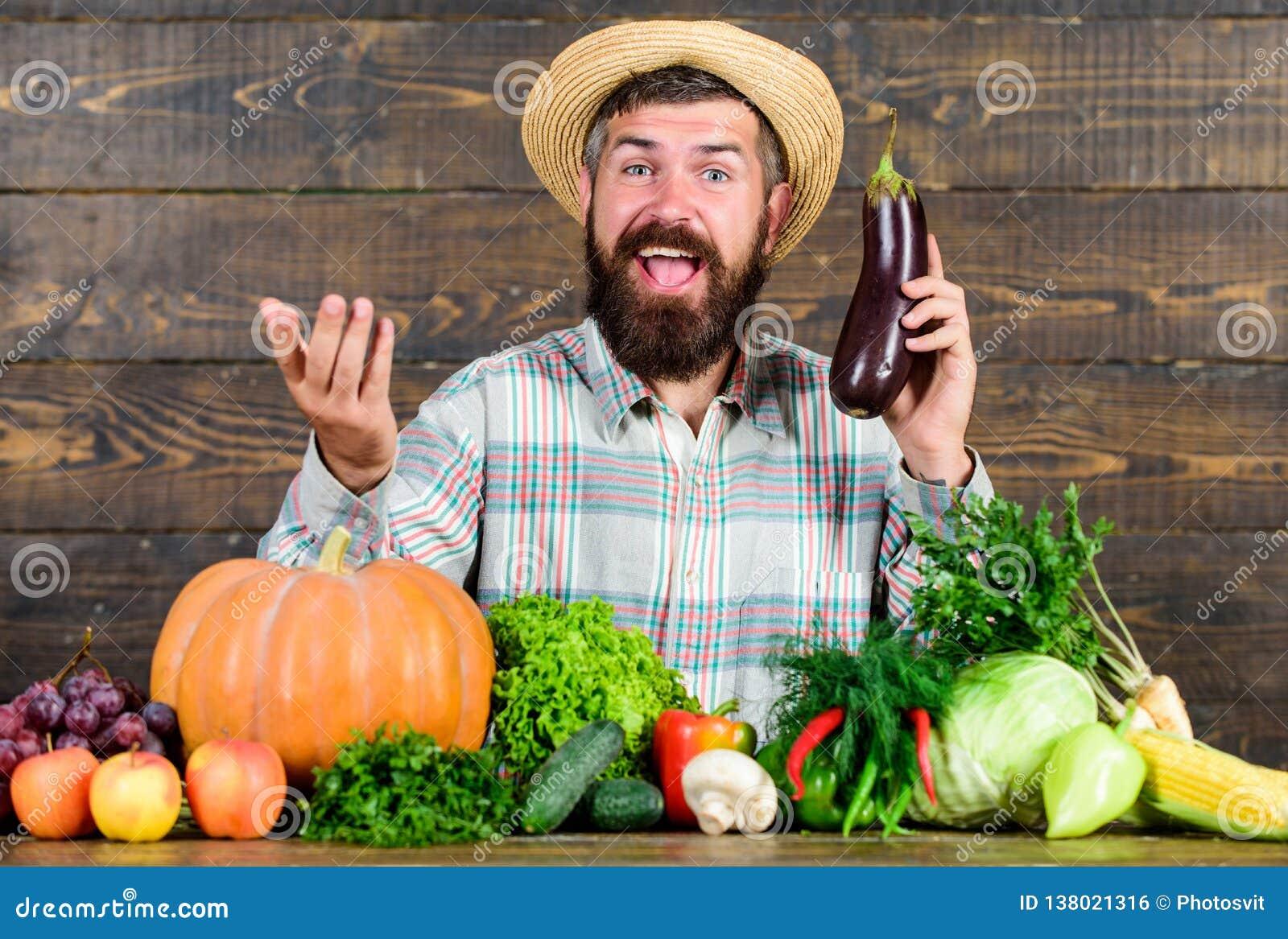 Organisches Gartenbaukonzept Landwirt mit organischem Gemüse Die Gartenarbeit und die Landwirtschaftssysteme schreiben spezifisch