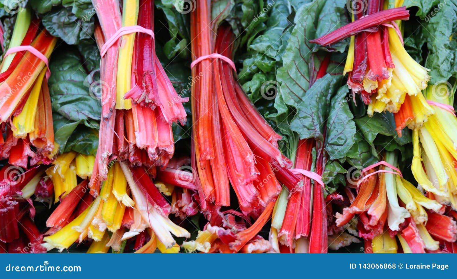 Organiska för regnbågeblandning för schweizisk Chard Veggies på bondes marknad