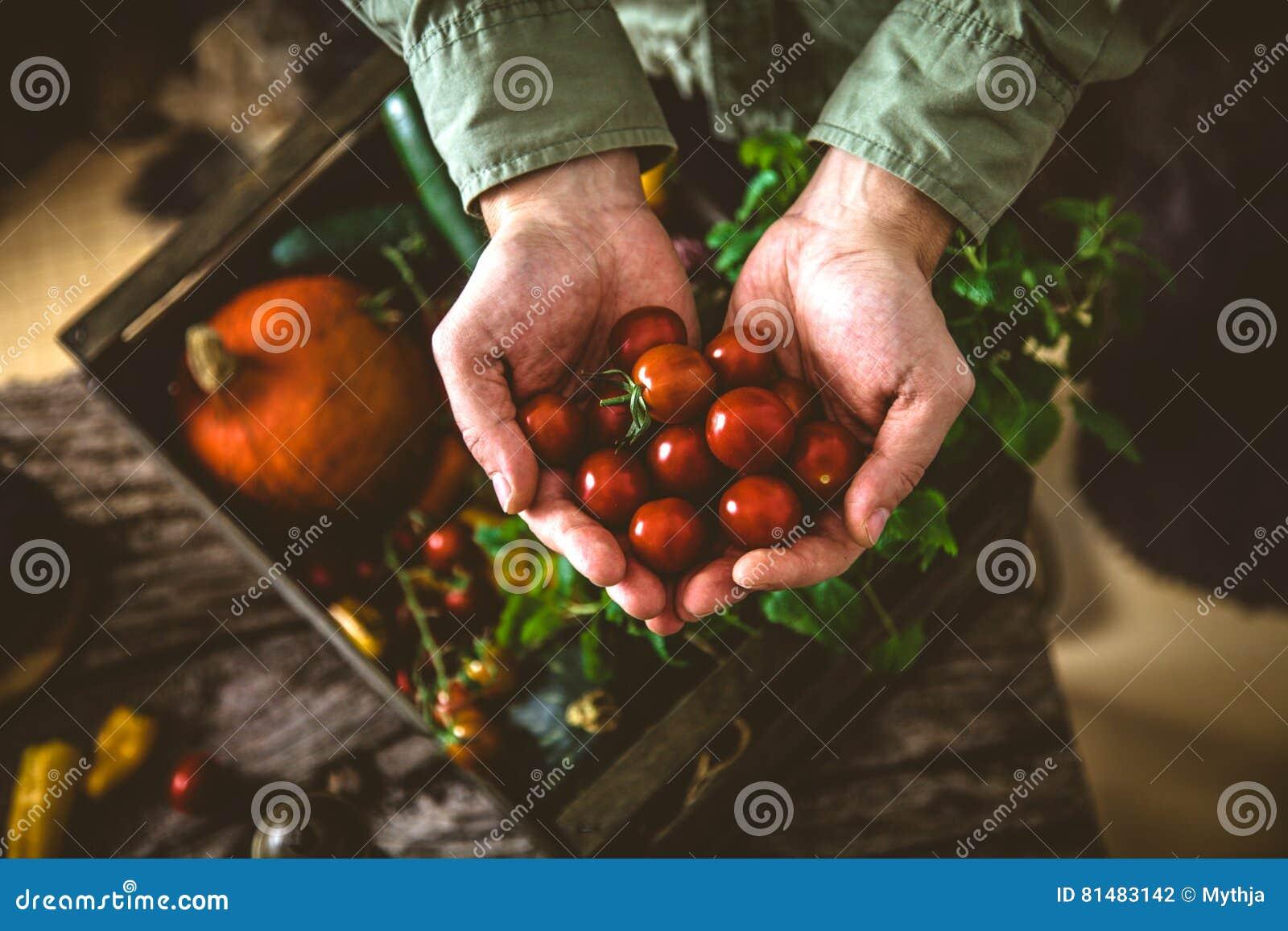 Organiska grönsaker på trä