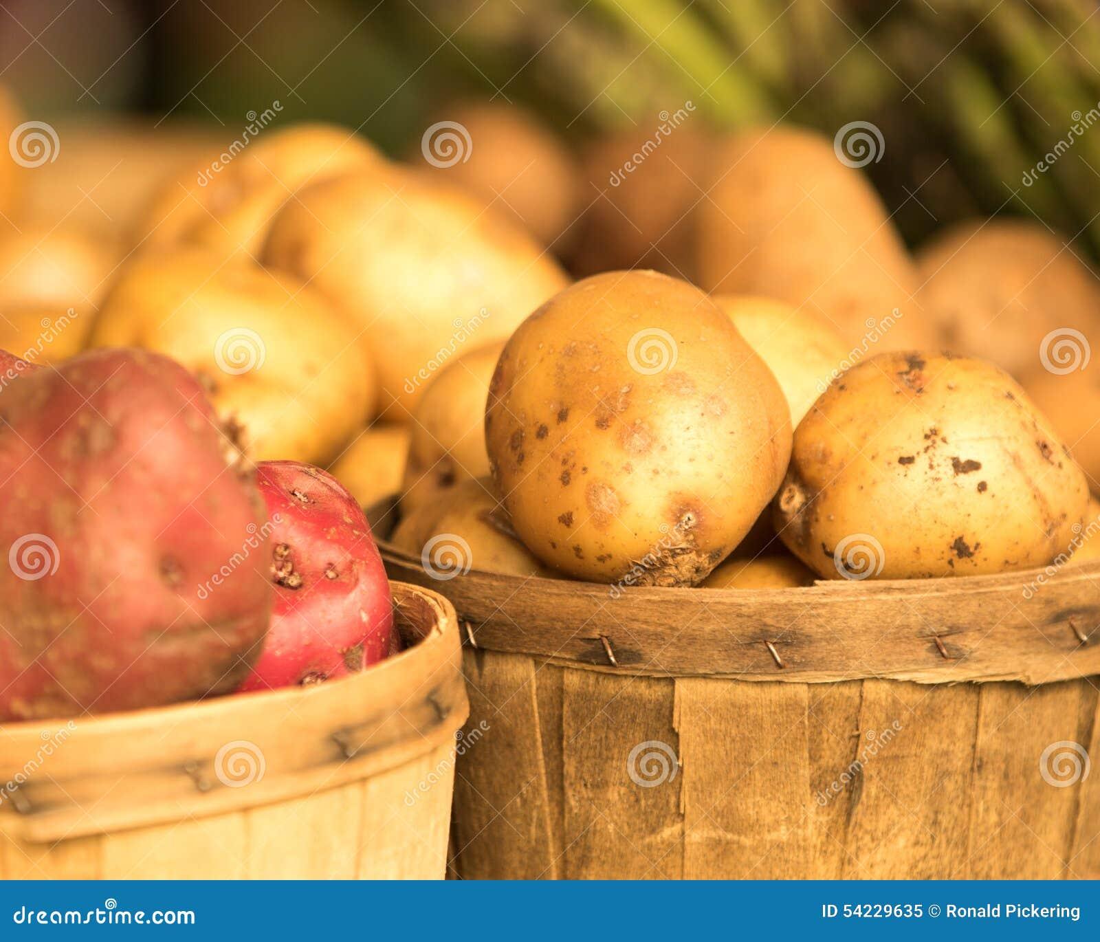 Organiska potatisar i korg
