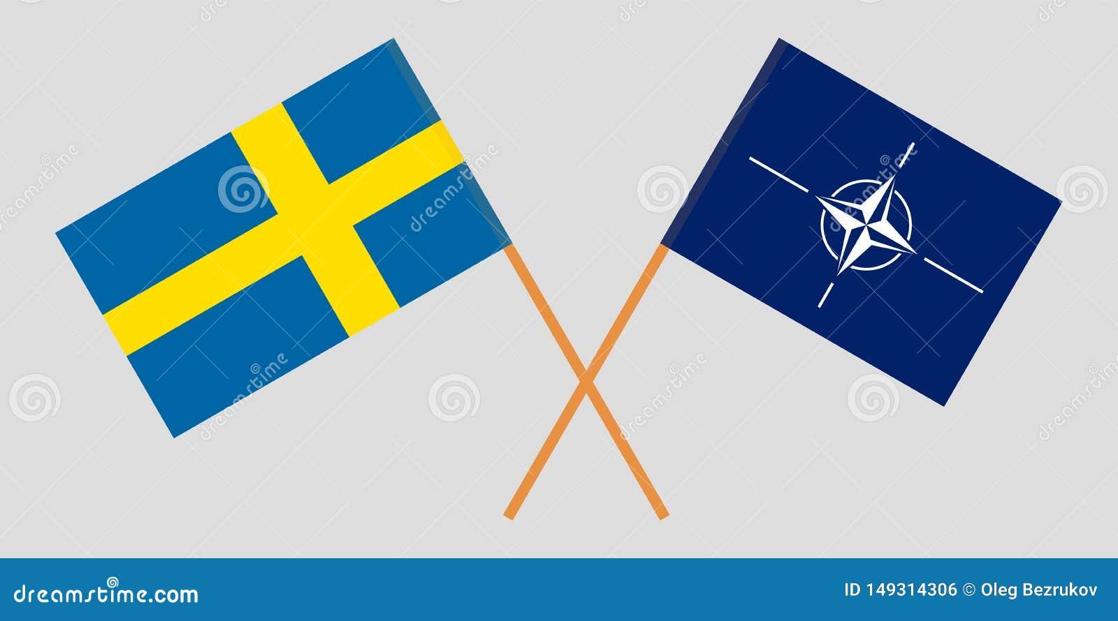 Organización del Tratado del Atlántico Norte y Suecia La OTAN y las banderas suecas Colores oficiales Proporci?n correcta Vector