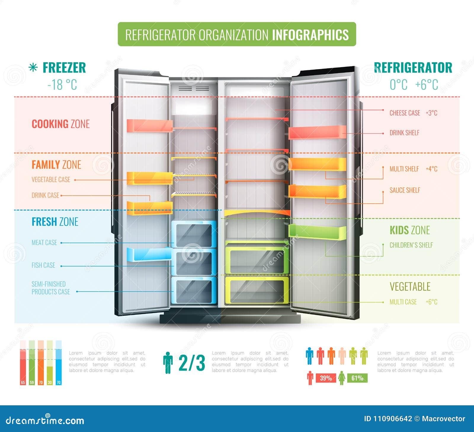 Organización Infographics del refrigerador