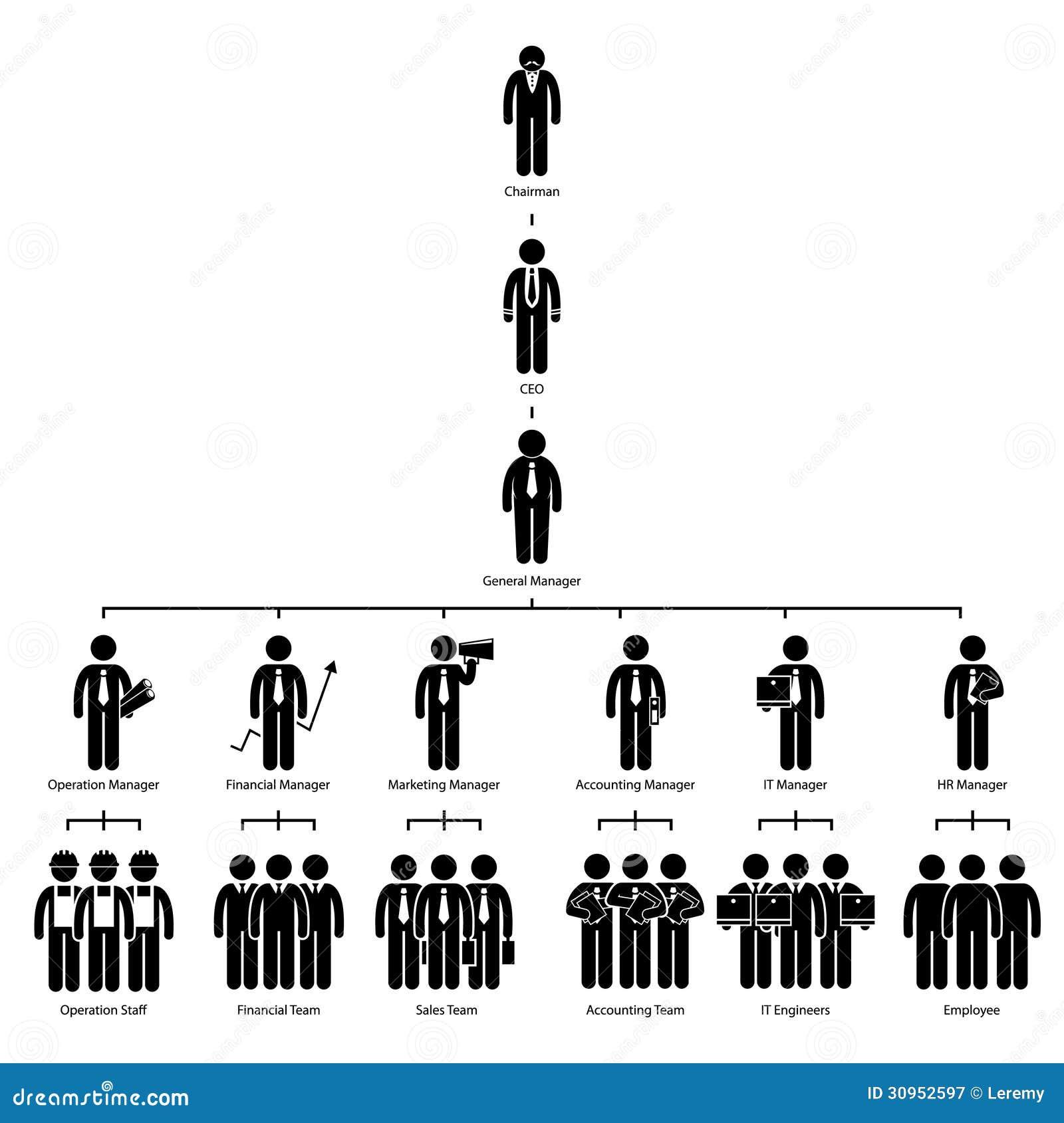 organization chart tree company pictogram stock vector