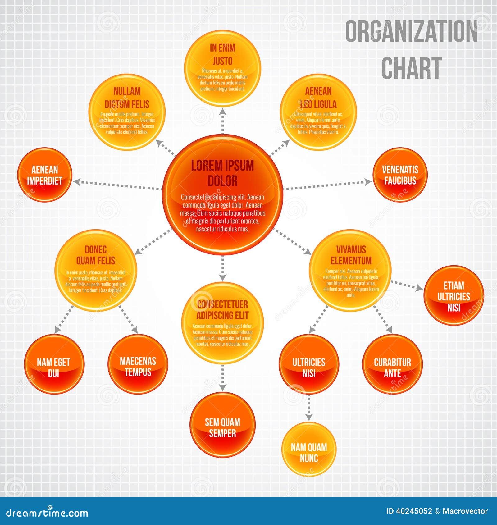 organizational chart infographic stock vector   image    organizational chart infographic