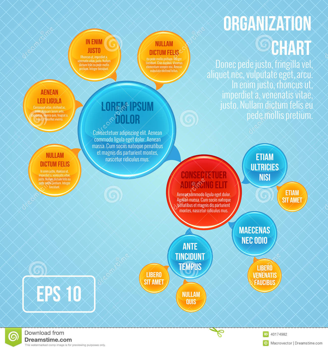 Organizational chart infographic business bubbles circle work ...