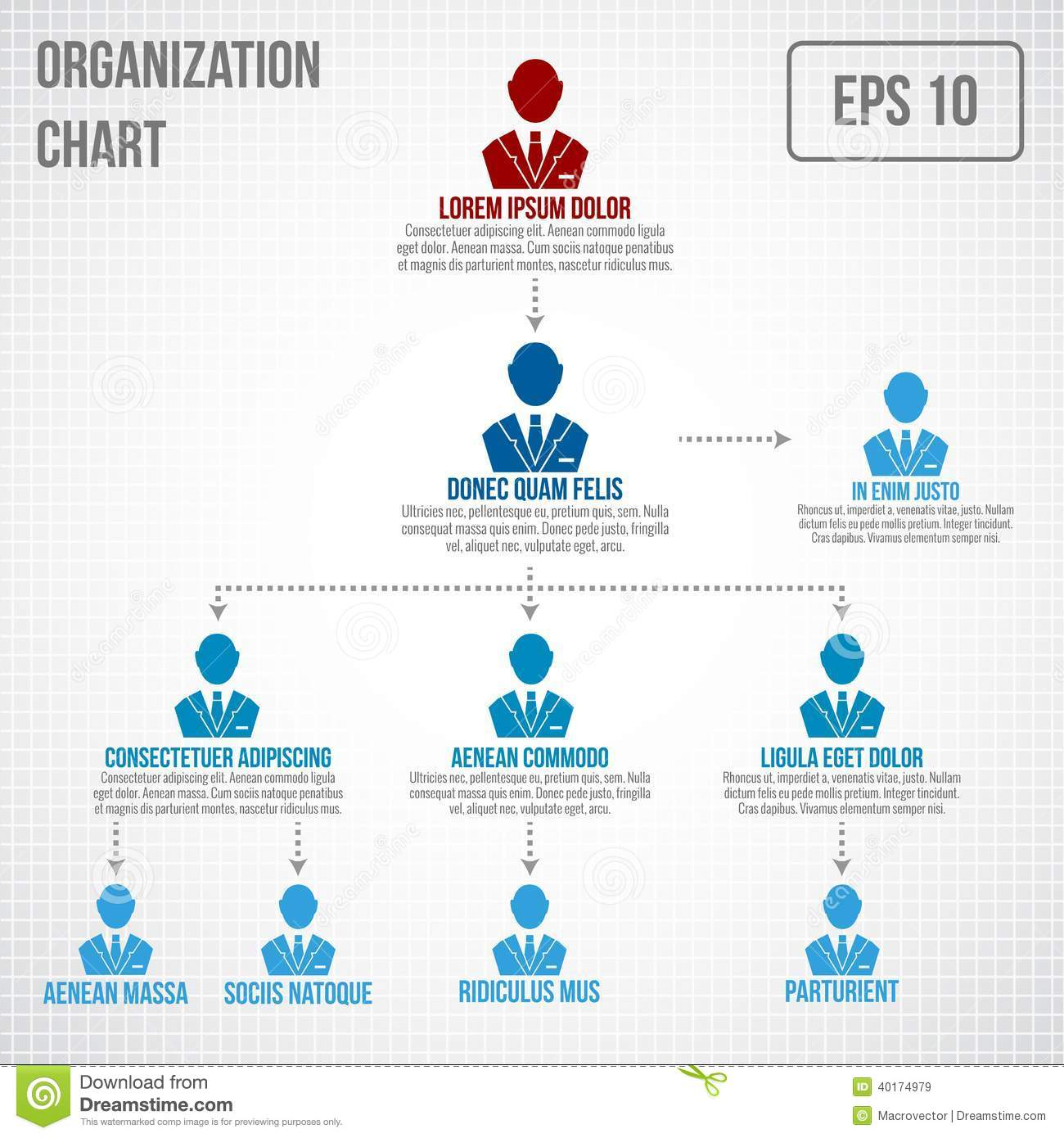 Business Structure. Organisation Chart. Infographic Design. Vector ...