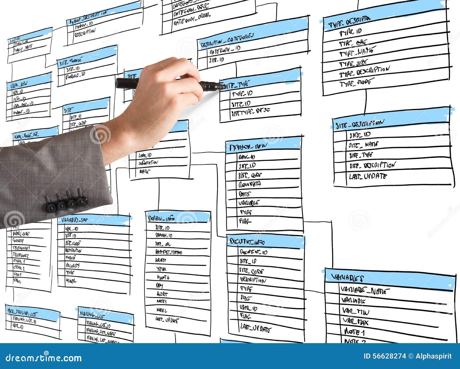 Organize a database