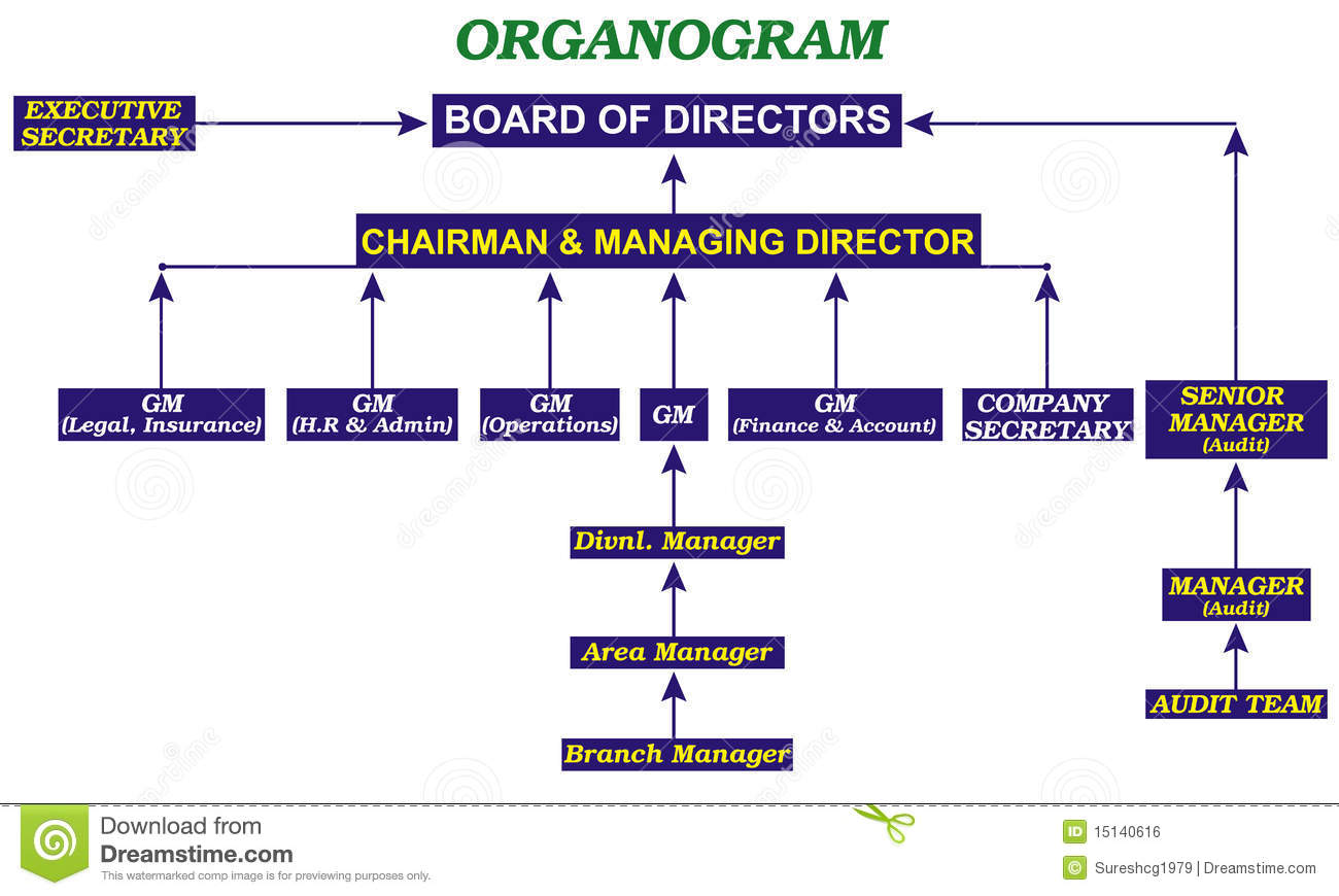 Organogram stock illustration illustration of board for Organigram template